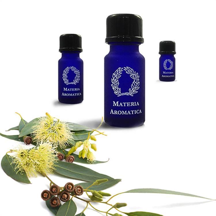 Eucalyptus, Blue-Gum