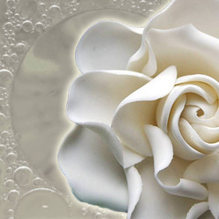 Monoi (Fragranced)