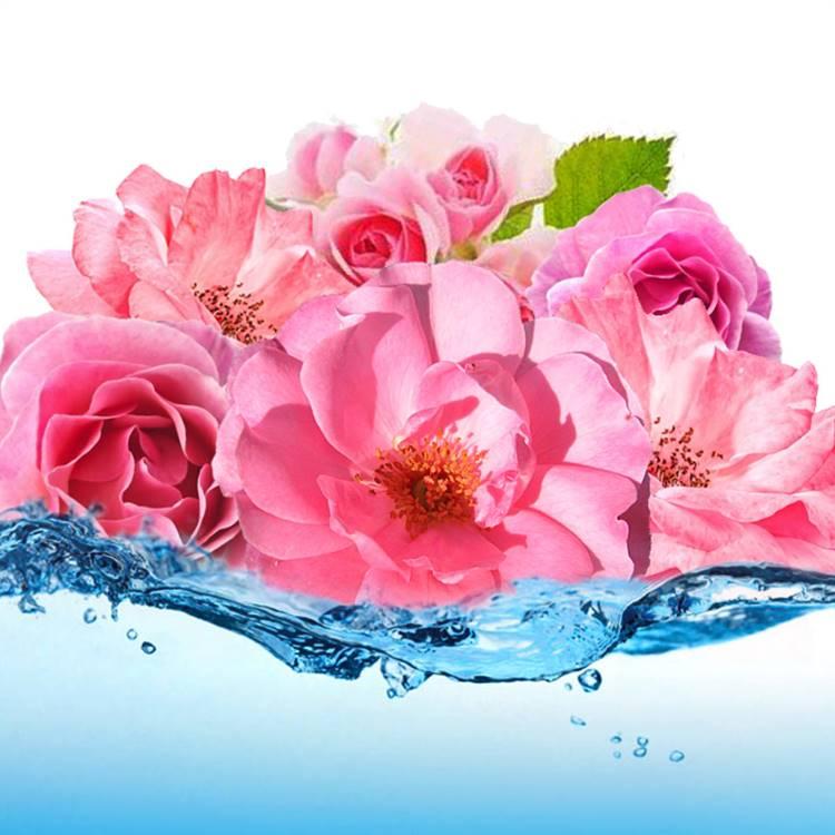 Rose Essential Water
